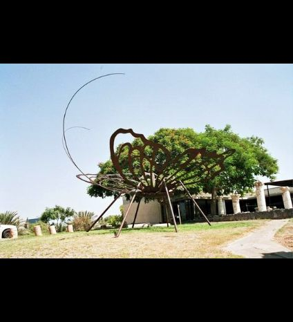 The world's largest butterfly in Gan Hashlosha in 2004